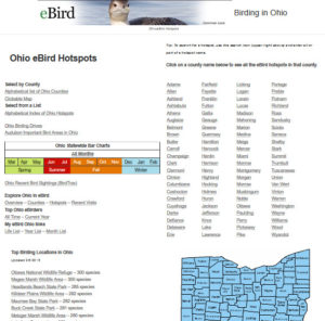 About this Website Archives - Birding in Ohio