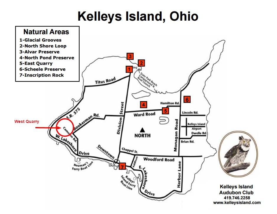 Kelleys Island-West Quarry - Birding in Ohio on kelleys island campground, south bass island state park map, middle bass island map, kelleys island ferry, kelleys island rentals,