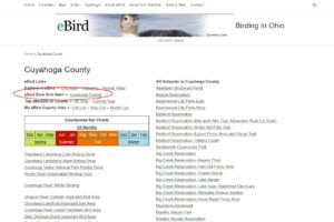 Ken Ostermiller, Author at Birding in Ohio - Page 6 of 7
